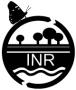 Logo-INR-90-76.jpg